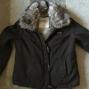 Hollister Coat/Jacket